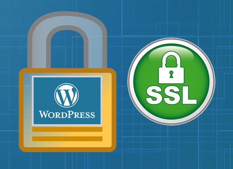 wordpress and ssl what do need to do for my website