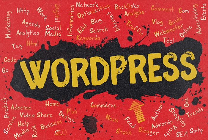 robust wordpress